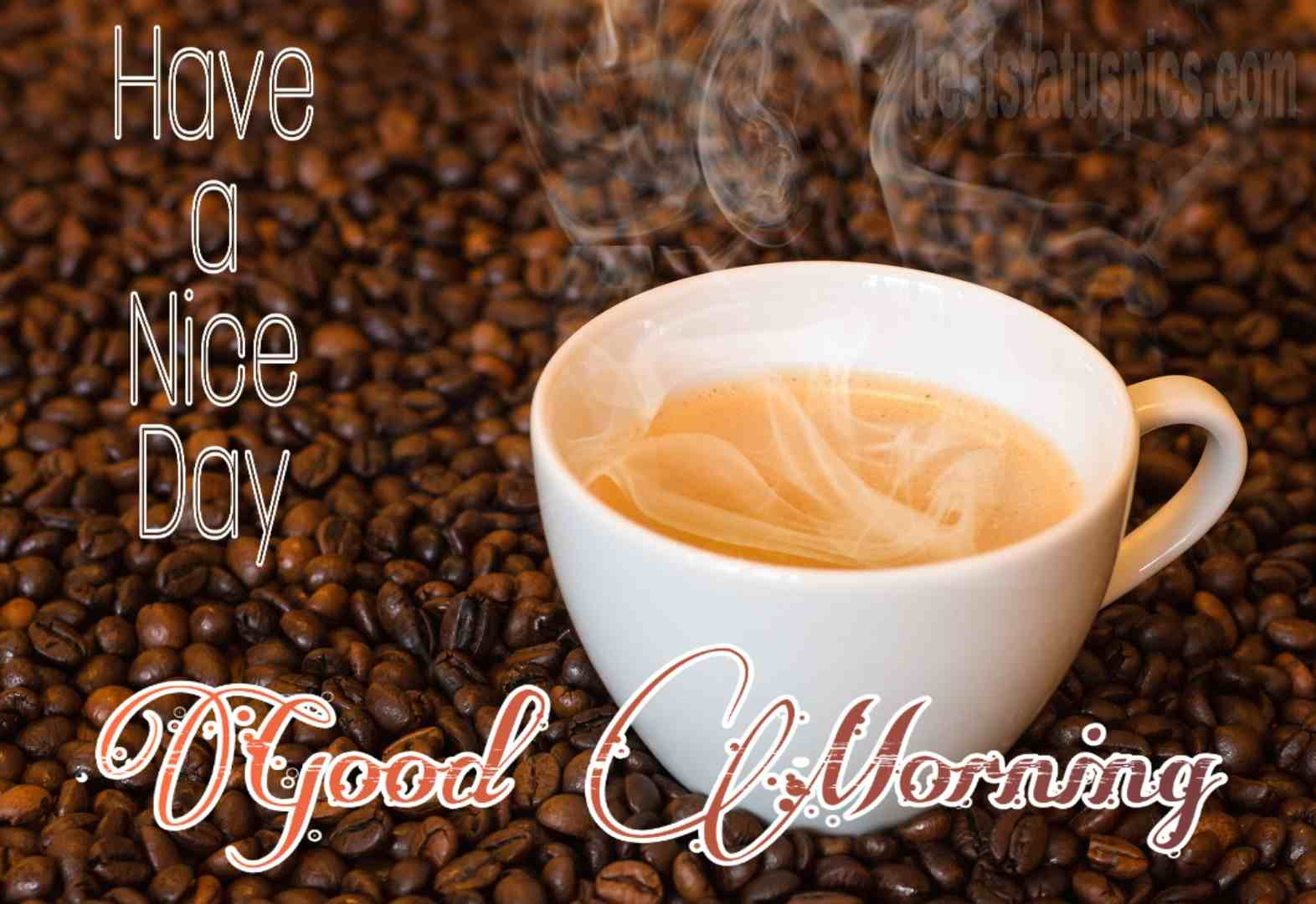 cup of coffee with good morning and have a nice day wish