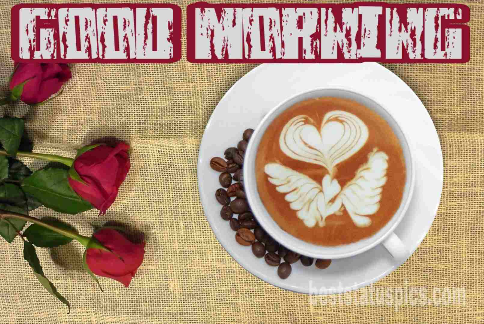 Good morning coffee cup with red rose flowers