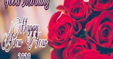 Good Morning Happy New Year 2020 Whatsapp Dp