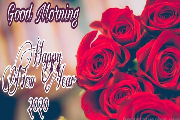 Good Morning Happy New Year 2020 Whatsapp Dp
