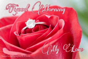 Special Good morning My Love with rose and ring Image for whatsapp dp status