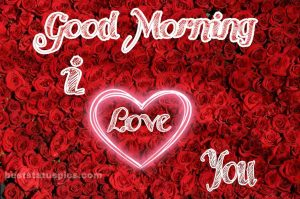 Good morning rose image with i love you and heart