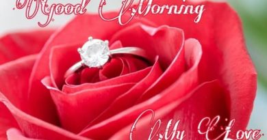 Good-Morning-Romantic-Rose-Images-For-Whatsapp_dp-Status