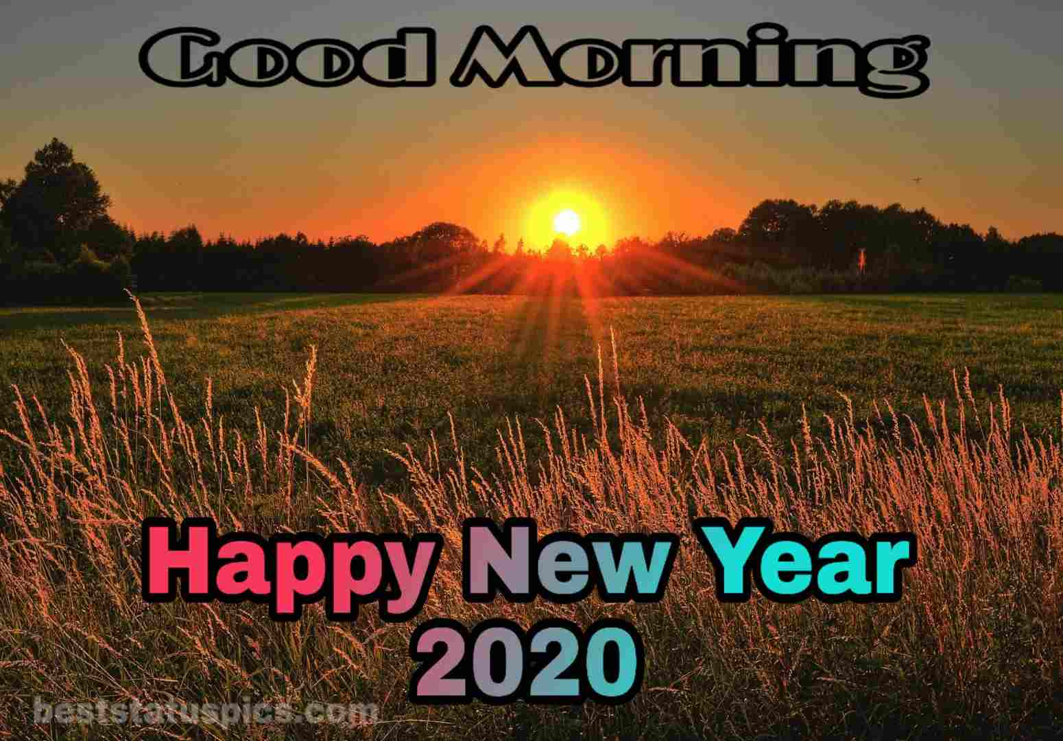 Good morning happy new year 2020 with sunrise