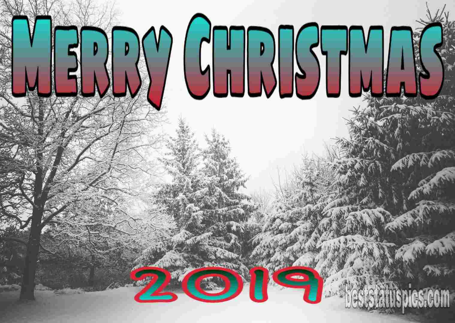 Merry Christmas wishes 2019 for Friends