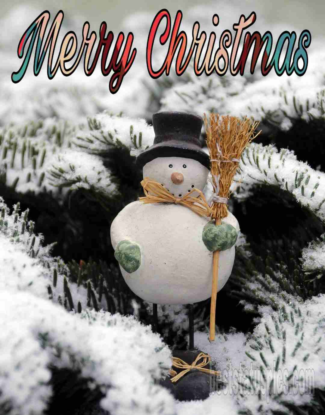 Merry Christmas wishes 2019 Facebook Story