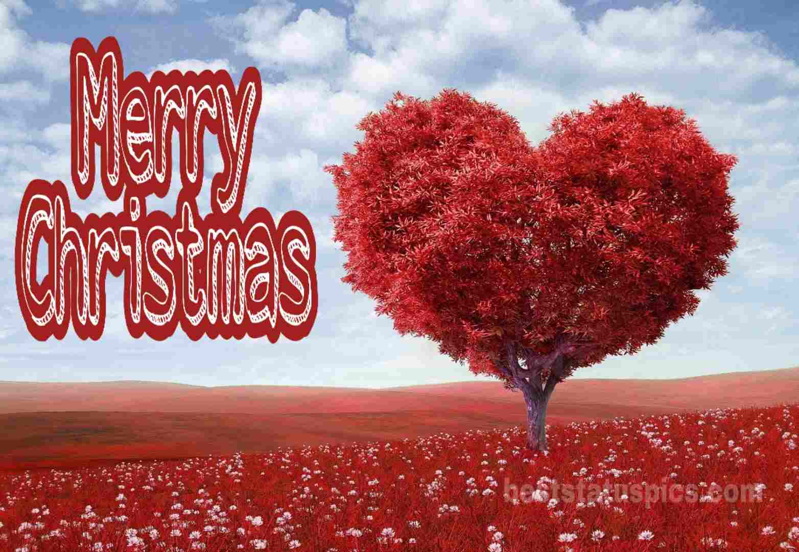 Merry Christmas wishes 2019 with Love Heart
