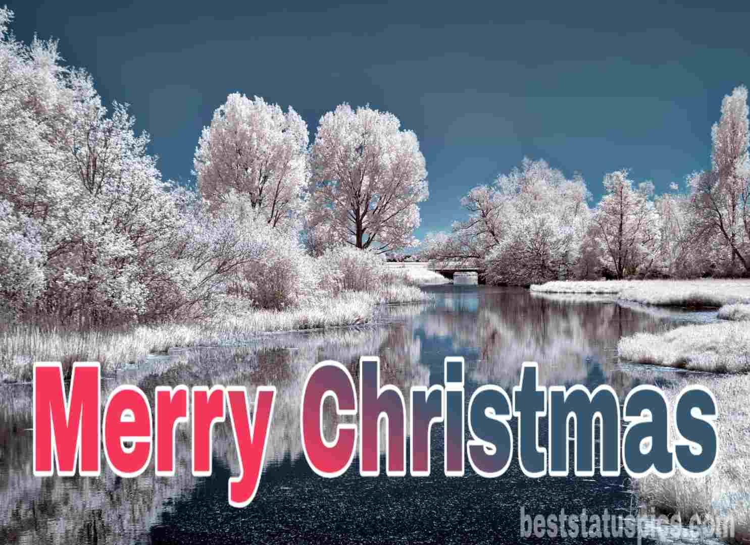 Merry Christmas 2019 Image Whatsapp Dp