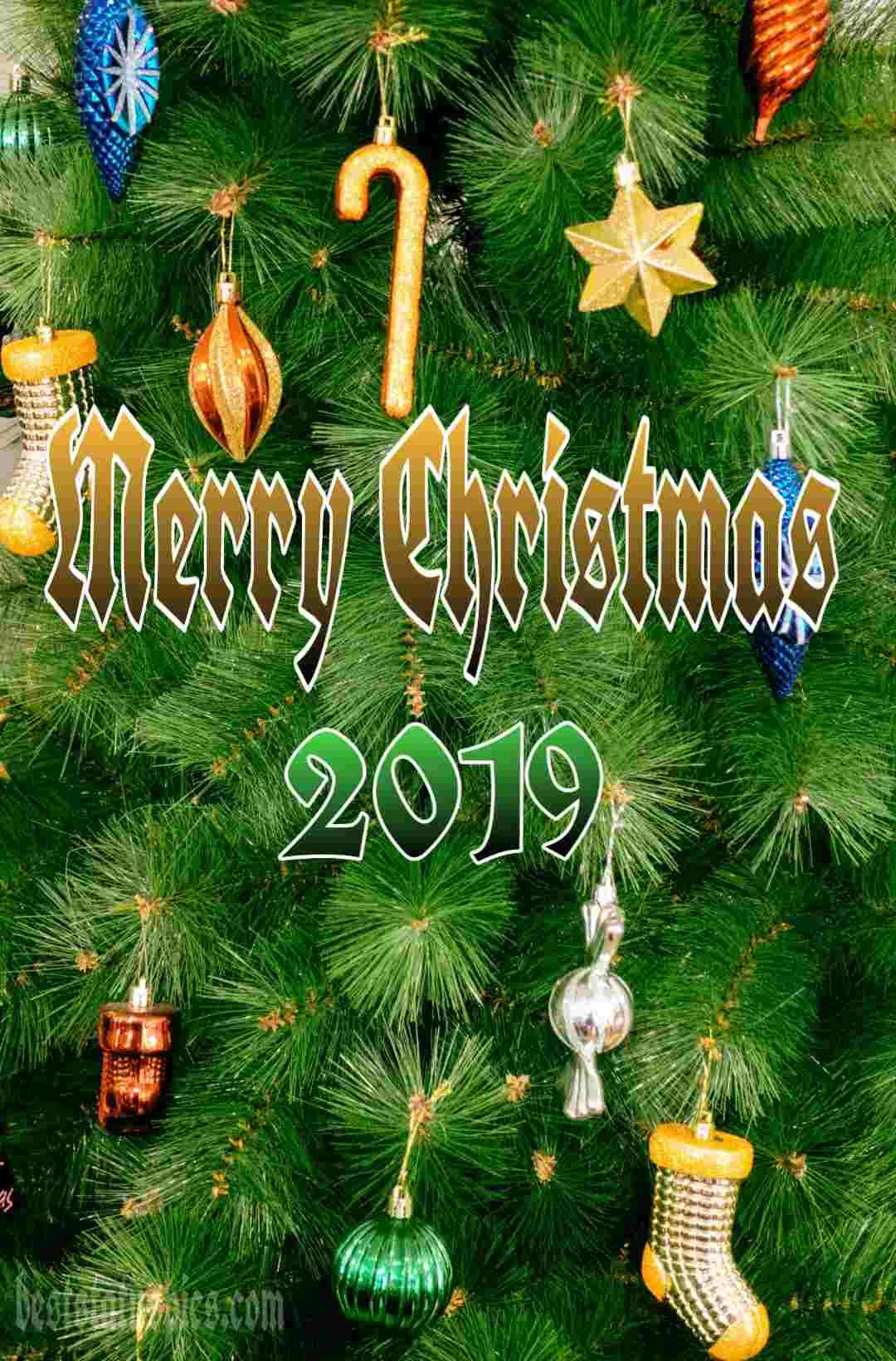Download Merry Christmas 2019 Whatsapp Status Free