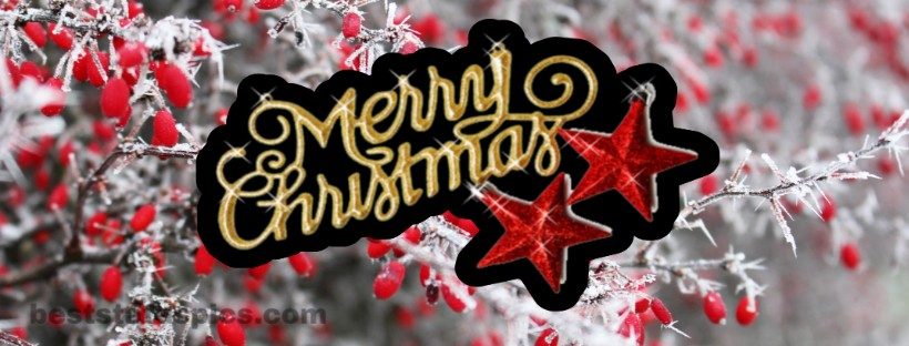 Merry Christmas 2019 Facebook Cover Pic