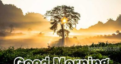 Good Morning Sunrise Images Featured