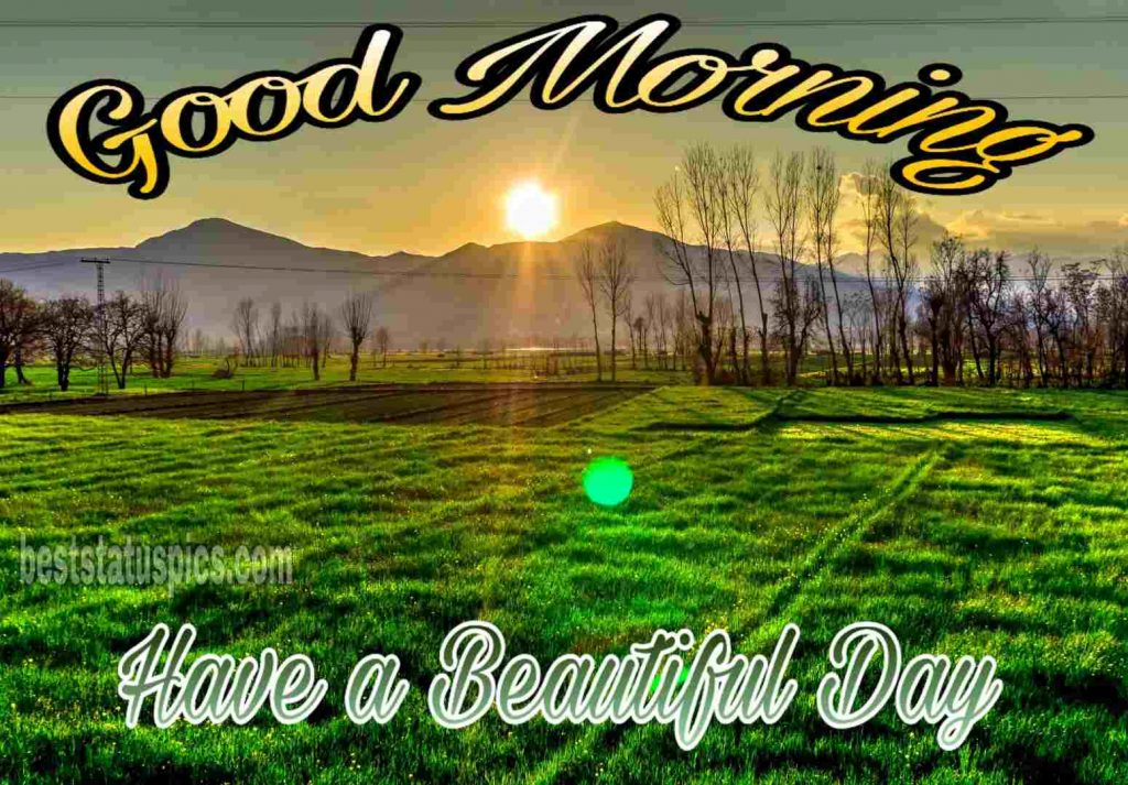 Good morning Have a beautiful day sunrise images
