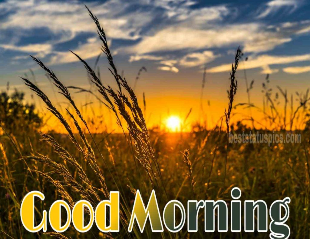 Good morning sunrise hd image