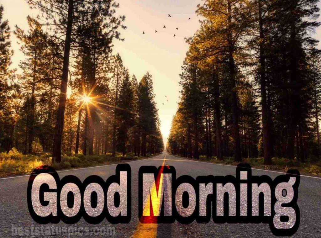 Good morning sunrise pics download