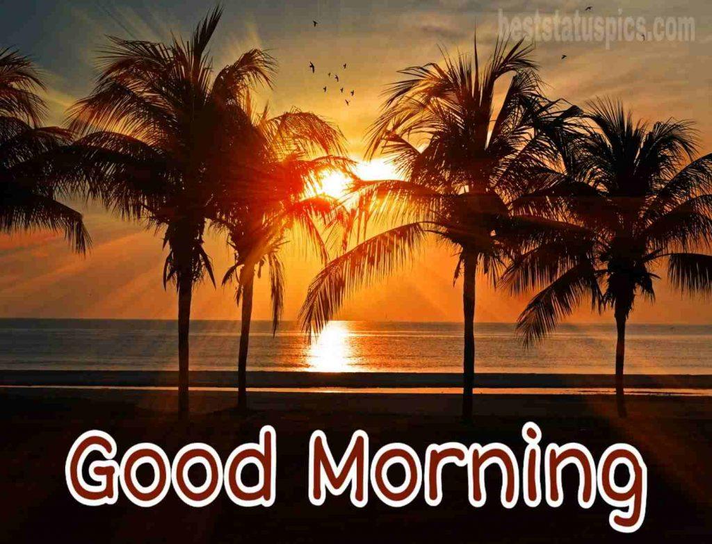 Good morning sunrise beach images
