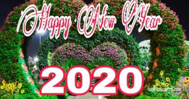 Happy New Year 2020 Facebook Covers Whatsapp DP