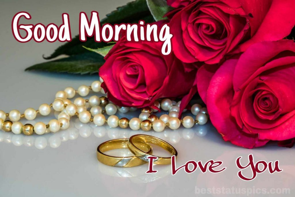 Good morning i love you roses image