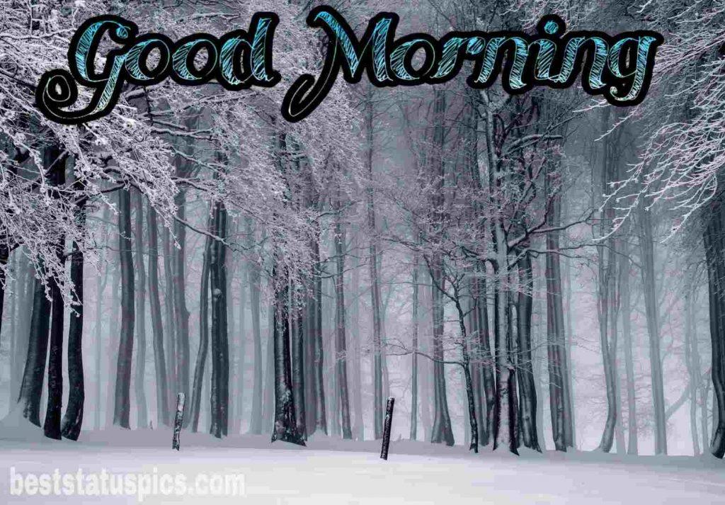 Good morning image with snowfall