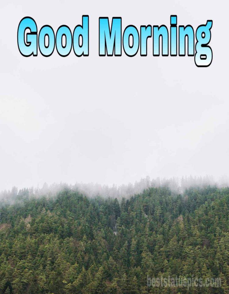 Good morning image for winter fog