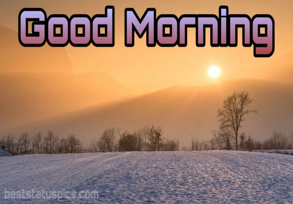Good morning picture of winter