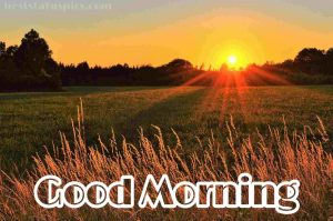 Good morning village nature with sunrise image for whatsapp
