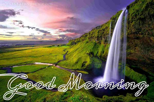 Good Morning Nature Images Featured