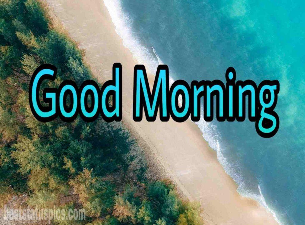 Good morning seashore image