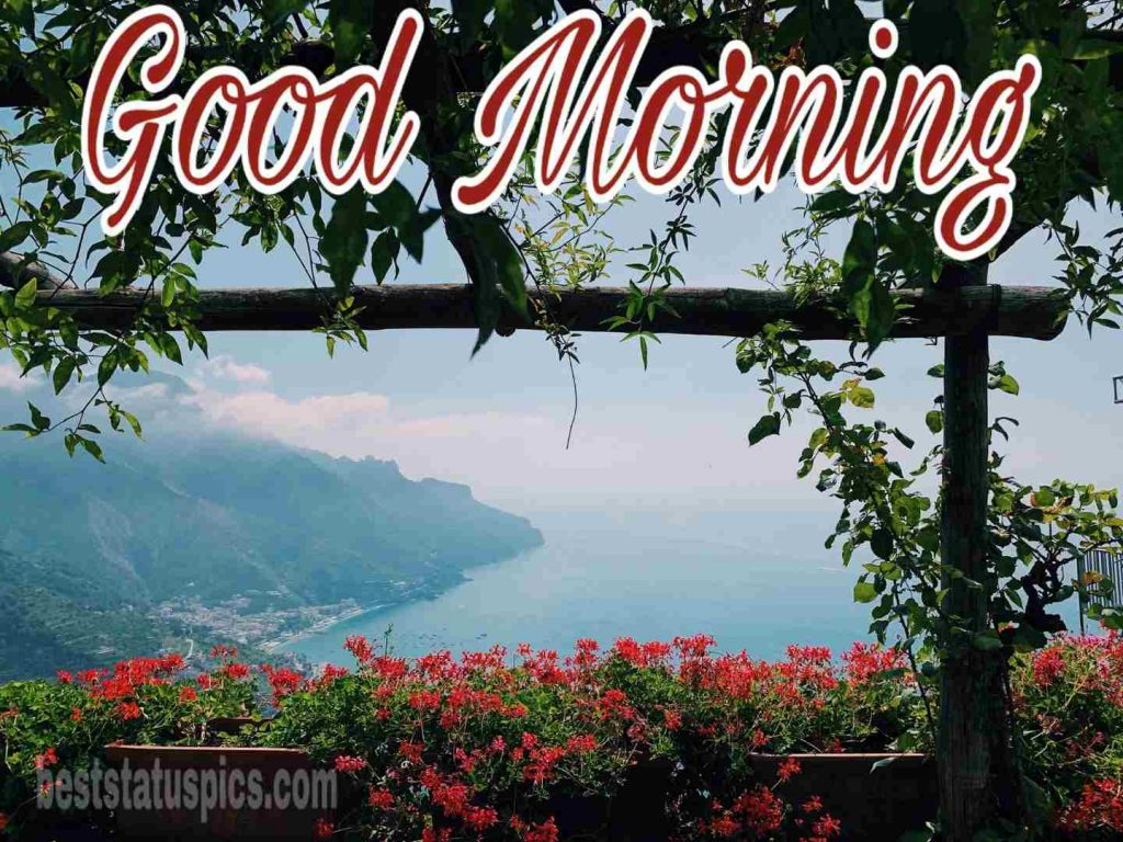 Good morning image with sea, flower and mountain