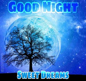 Good night blue moon image