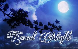 Good night image with moon and nature