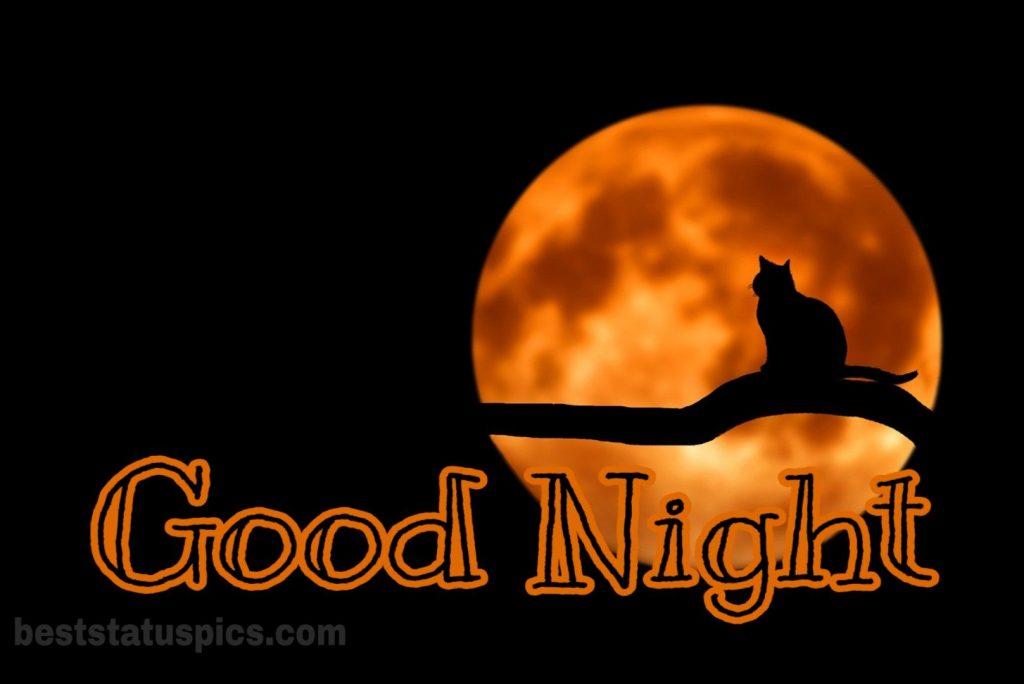 Good night full yellow moon image