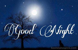 Good night nature moon image
