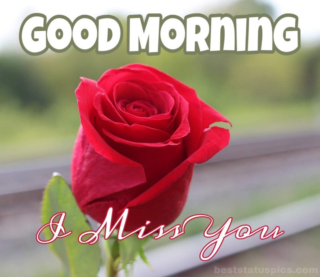 Good morning miss u love image