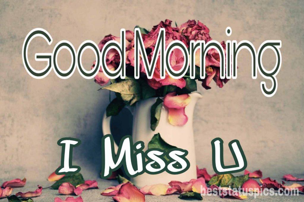 Good morning i miss you flower image