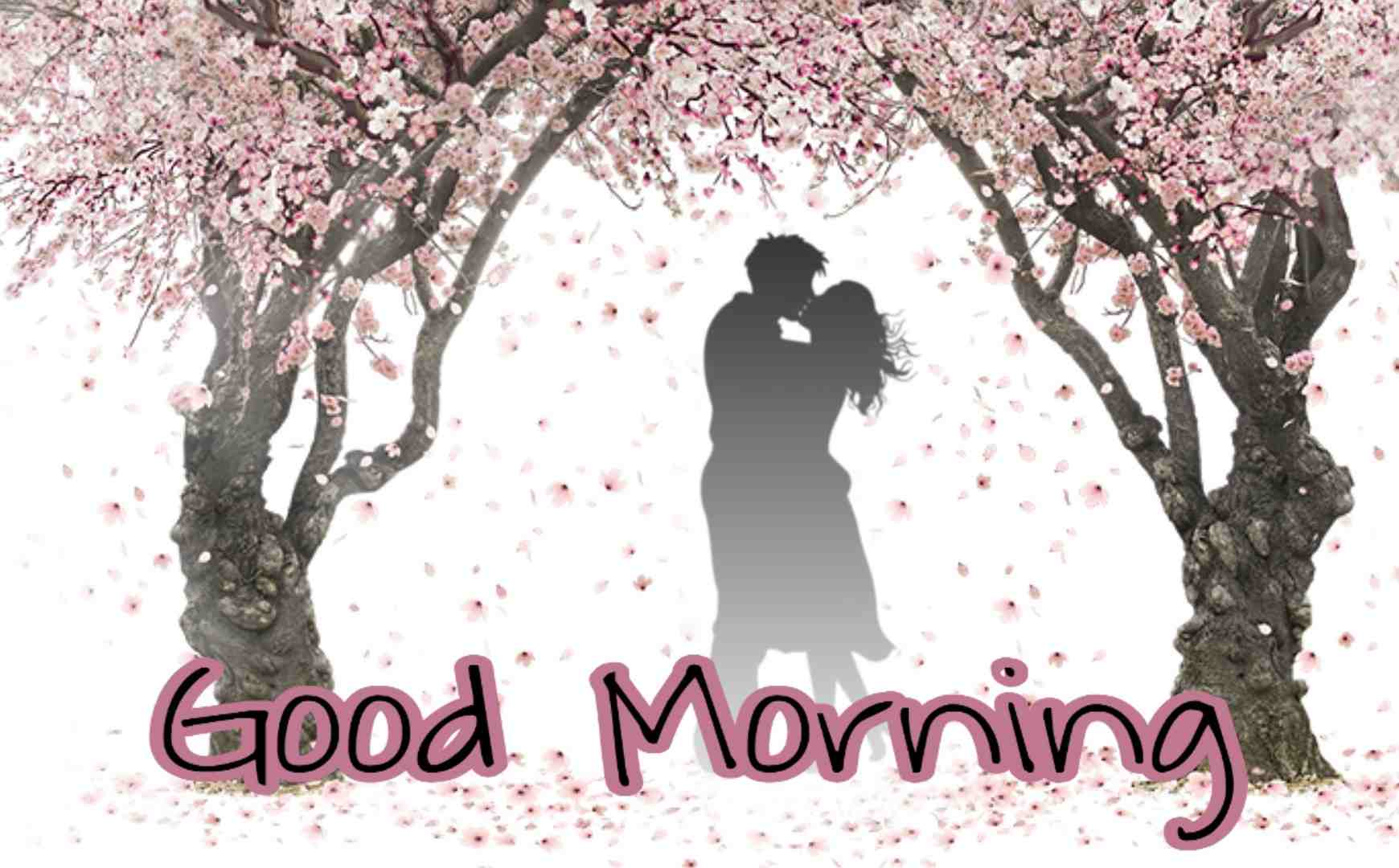 141 Romantic Good Morning Images For Love Couple Hd Best Status Pics