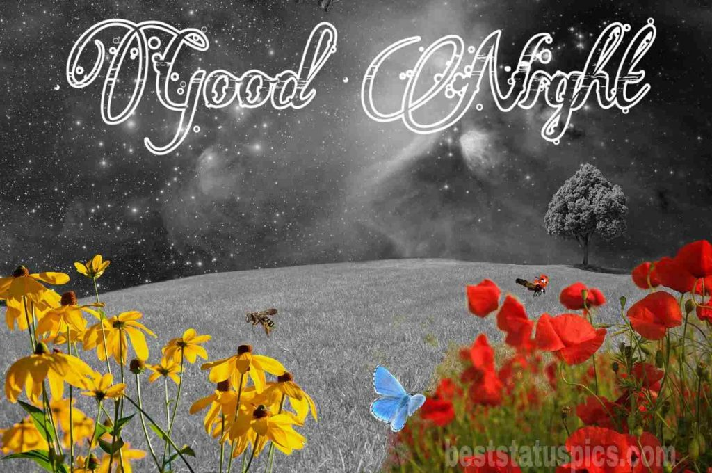 Good night love flowers image