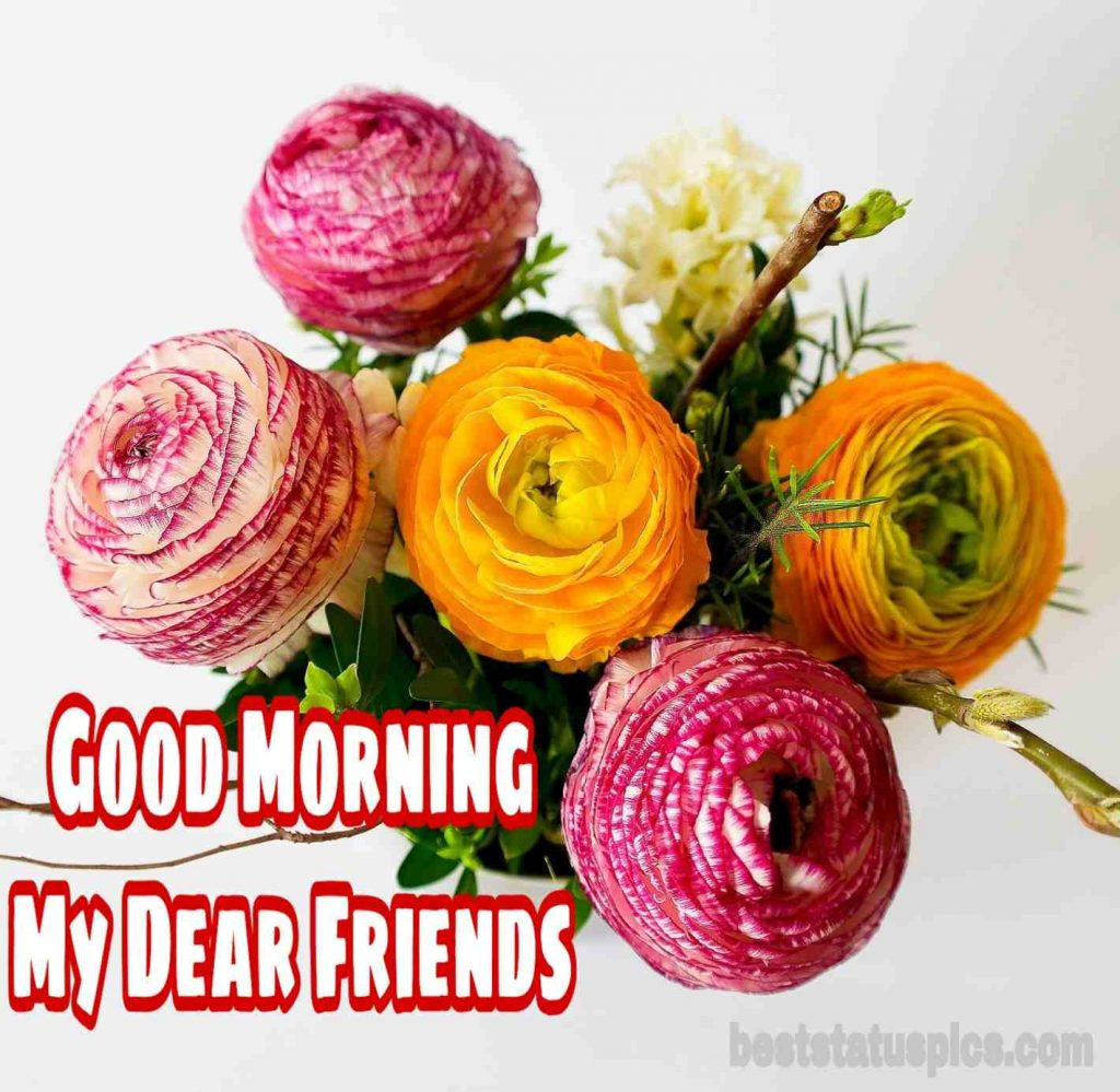 Good morning images for friends with flowers HD