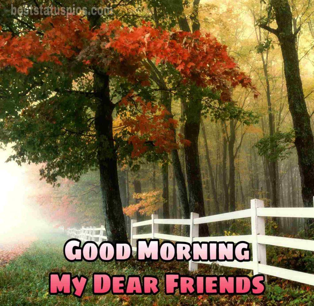 Good morning dear friends images HD