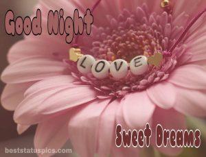 Good night love flower images