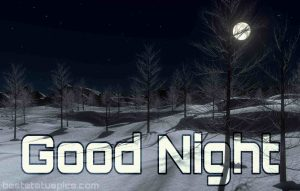 Good night images with nature and moon HD