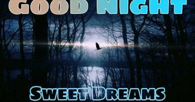 Good night nature images featured