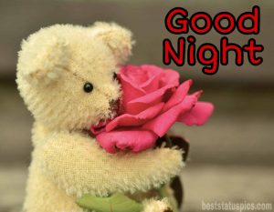Good night images of red rose whatsapp