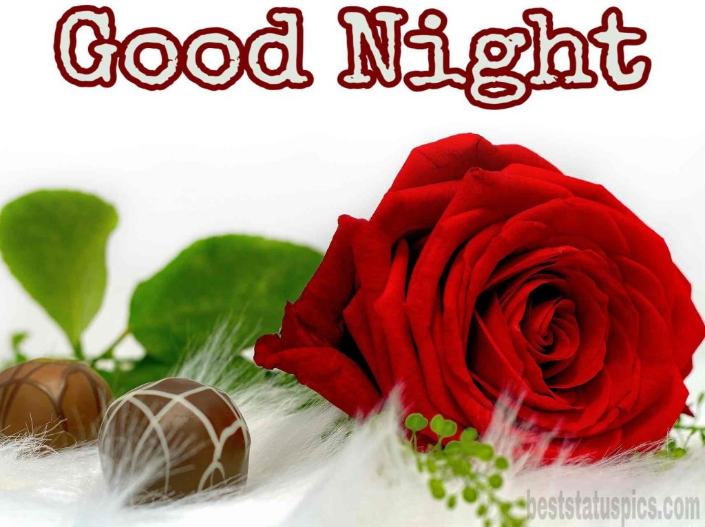 Good night images with red rose hd