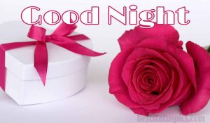 Romantic good night single rose images HD