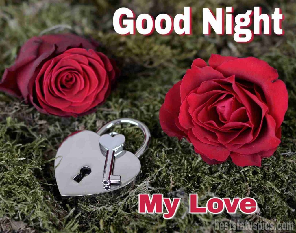 Good night images with red rose flowers