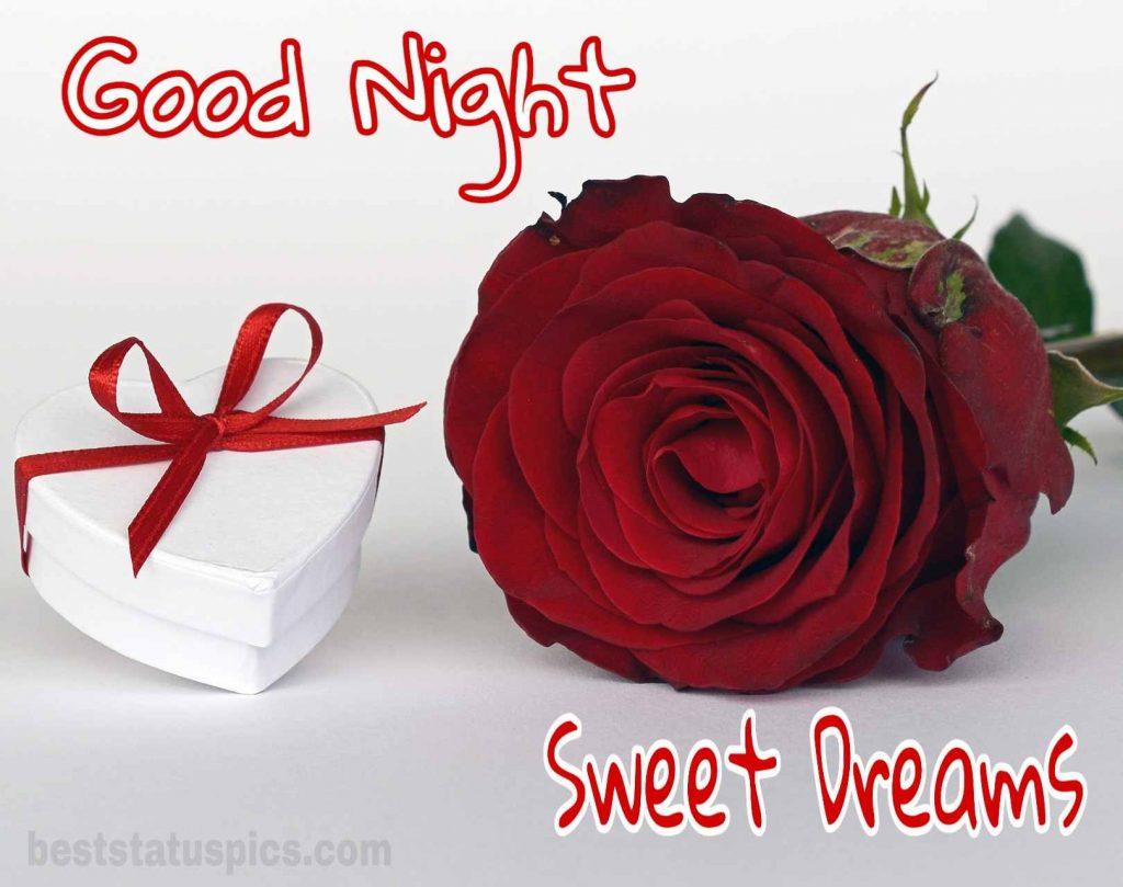 Good night pic rose love