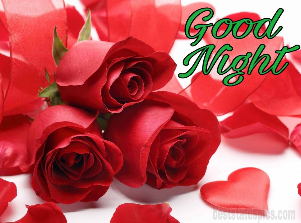 Good night romantic rose images
