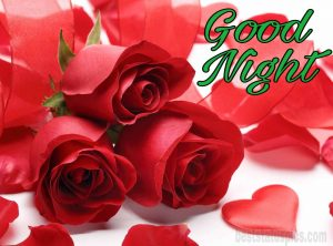 Good night romantic rose images