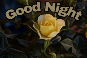 Good night yellow rose images