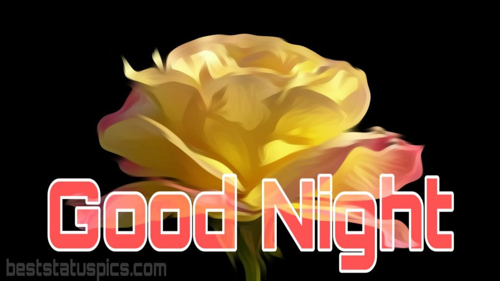 Good night wishes with yellow rose